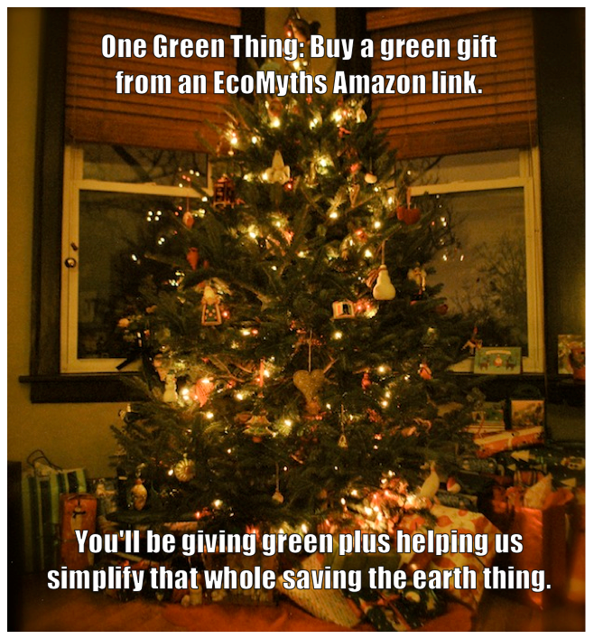 Green-Gifts-One-Green-Thing-EcoMyths