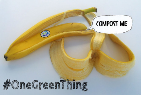 OneGreenThing-EcoMyths-Compost
