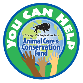 You-Can-Help-logo